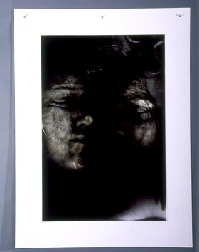 Composite Series, Genetic Heritage