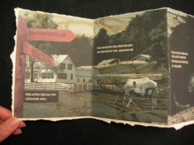 Accordion Book #3