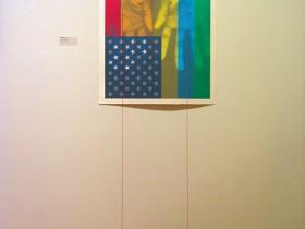 Patriot Series, I Pledge Allegiance, gallery installation